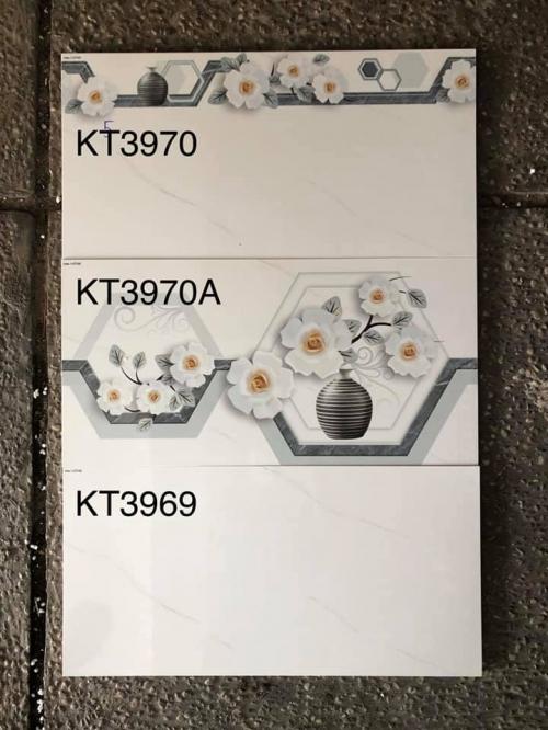 VIGLACEGA-KT3969-3970-3970A(30X60)