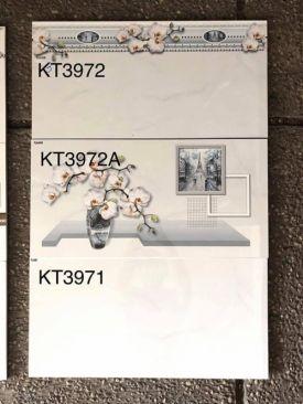 VIGLACEGA-KT3971-3972-3972A(30X60)
