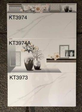 VIGLACEGA-KT3973-3974-3974A(30X60)